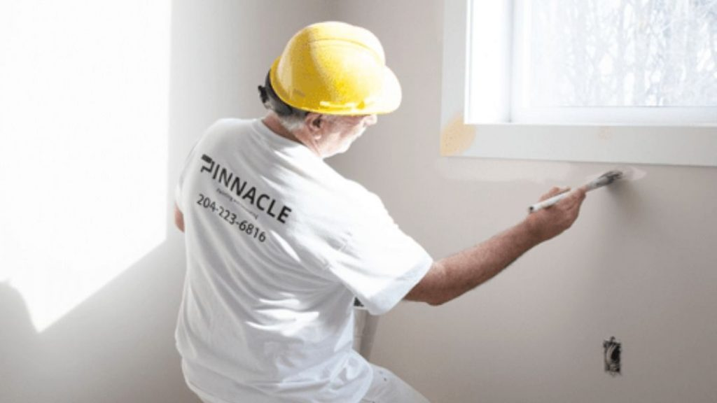 Pinnacle Painter